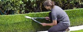 Jardinier : Fiche métier
